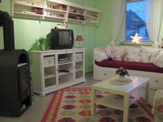 Wohnzimmer mit Kaminofen, Ferienwohnung Berliner Schwänchen in Berlin