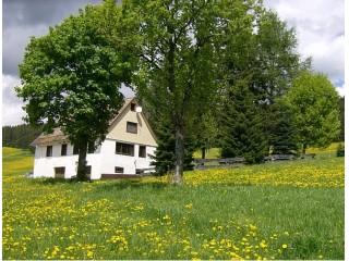 Ferienhaus Oehlershüsli, Ferienhaus Oehlershüsli in Eisenbach (Hochschwarzwald)