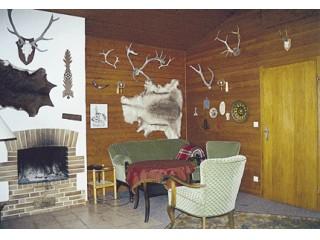 Die Kaminecke im Wohnzimmer, Ferienhaus Wellmer am Edersee in Waldeck