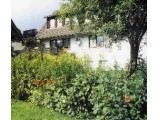Ferienwohnung Ahornblick - ist der erste Schritt in einen erholsamen Urlaub! in Braunlage