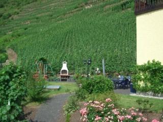 Freisitz in den Weinbergen, ***Ferienwohnung Christel & ****Ferienwohnung  Martin in Sankt Aldegund