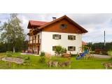 Ferienwohnung Ostallgäu - sehr ruhige Einzellage, umgeben von saftigen Allgäuer Wiesen und Wäldern in Wald, Ostallgäu
