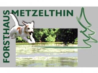 Ferien mit dem Hund, Ferienwohnung in der Uckermark | Ferien mit dem Hund in Templin