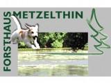 Ferienwohnung in der Uckermark | Ferien mit dem Hund - Ferienwohnung in der Uckermark Haustierfreundlich in Templin