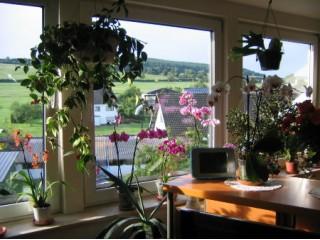 Panorama-Blick aus den Wohnzimmer-Fenstern, Ferienwohnung Retzlaff in der Eifel in Schwirzheim