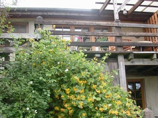 Terrasse mit Gartenmöbel, Ferienwohnung Mecklenburgische Schweiz in Panschenhagen