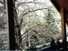 Ausblick Fewo oben Winter