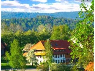 Ferienwohnungen Haus Schlageter, Ferienwohnungen Haus Schlageter in Dachsberg (Südschwarzwald)