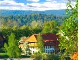 Ferienwohnungen Haus Schlageter in Dachsberg (Südschwarzwald)
