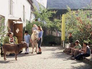 , Ferienwohnungen Nengshof in Wißmannsdorf