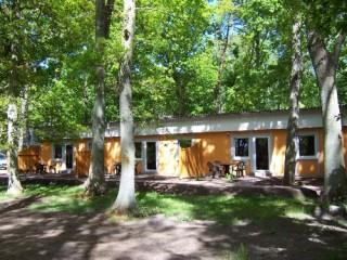 Willkommen auf Rügen, Ferienwohnungen und Gästewohnungen auf Rügen in Dranske-Bakenberg