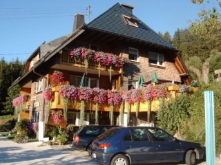 Sommer im Haldenhäusle, Haldenhäusle - Ferienwohnung Feldberg in Titisee-Neustadt
