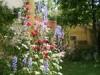 Sommergarten mit Blick zur Sauna