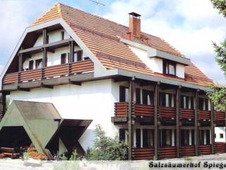 Hotel-Pension Salzsäumerhof-Hartl, Hotel & Pension Salzsäumerhof in Spiegelau