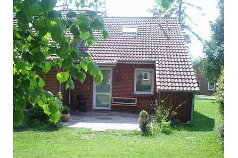 Eingang mit Terrasse und Rasenflächen
