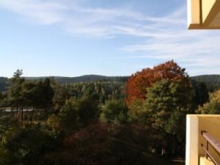 Blick von dem Balkon, Panoramic Hohegeiß in Braunlage in Braunlage