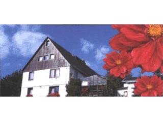Hausansicht, Pension Kroll in Krumhermsdorf in Neustadt in Sachsen