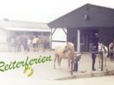 Reiterhof & Pension Pede in Altes Lager