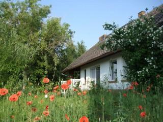 Willkommen, Seminar- und Gästehaus| Akademie Ahlbeck in Ahlbeck