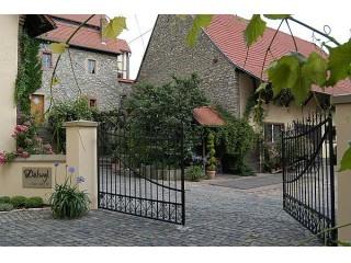 , Weingut Dätwyl   Gästezimmer in Wintersheim